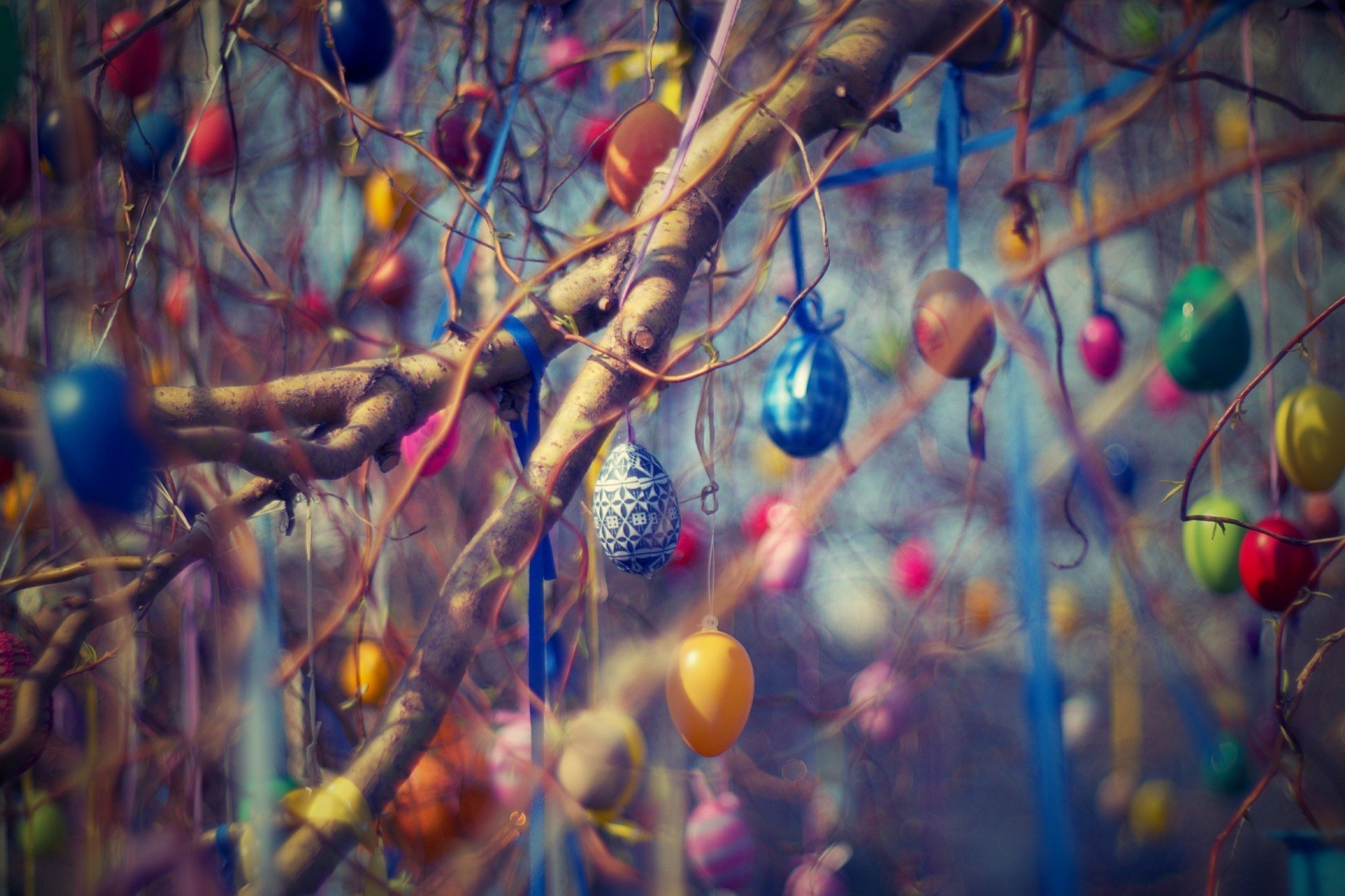 Trees decorated with Easter eggs in Germany