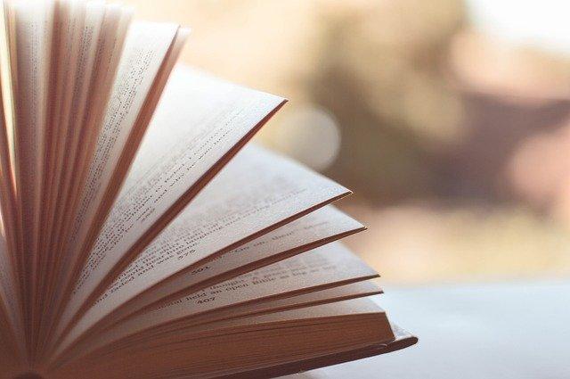 Women in translation books